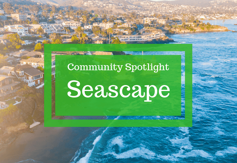 Community Spotlight: Seascape
