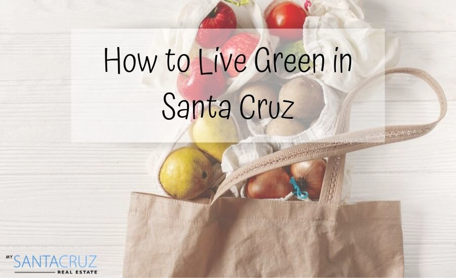 how to live green in Santa Cruz