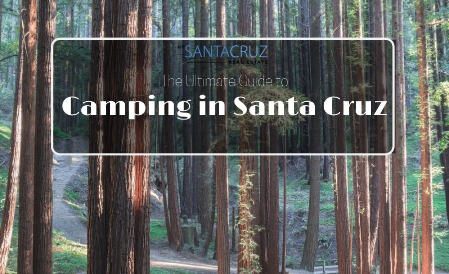 Guide to camping in santa cruz